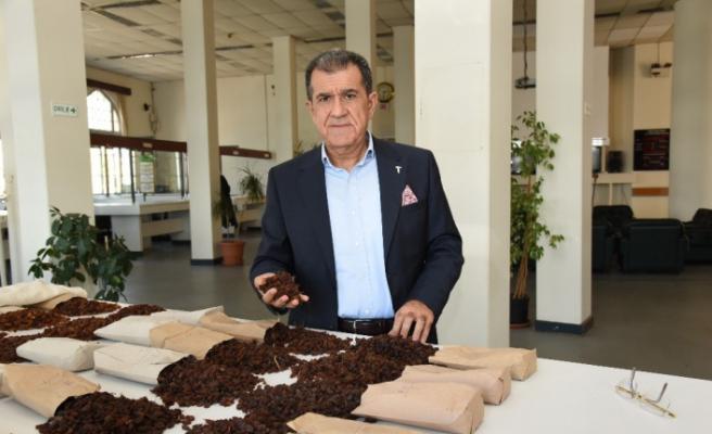 Çekirdeksiz kuru üzüm ihracatı 500 milyon doları aştı