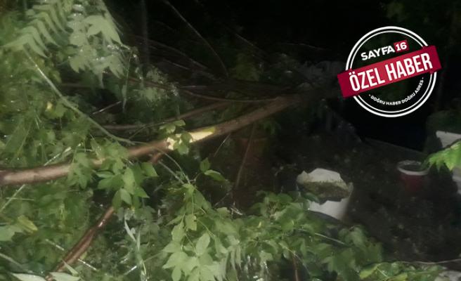 Şiddetli yağmur Mustafakemalpaşa'yı vurdu