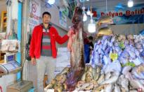 Yılın en büyük yayın balığı yakalandı