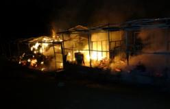 Bursa'da at çiftliğinde yangın: 10 at telef oldu