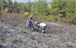 Osmaniye'de çıkan orman yangınında bir kişi...