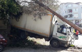 Yasak olan yokuşa giren kamyonet freni patlayınca...