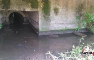 İznik Gölü'nü besleyen derenin kirlenmesine...