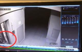 Bisiklet hırsızlığı apartmanın güvenlik kamerasına...