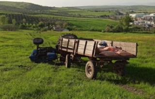 Devrilen traktörün altında kalarak can verdi