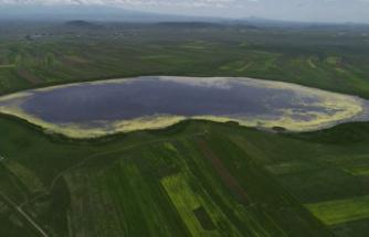 Türkiye'nin 13. Ramsar alanı Kuyucuk Gölü'ne can suyu