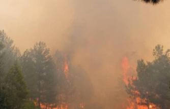 Seydikemer yangını tekrar başladı
