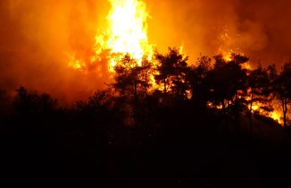 Bursa'daki orman yangını 4 saatte kontrol altına  alındı
